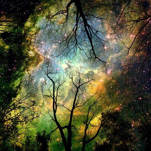 *Les Créatures Féeriques, Petit Peuple, Esprit de la Nature ou encore Elémentaire* Part: 3 1_201010