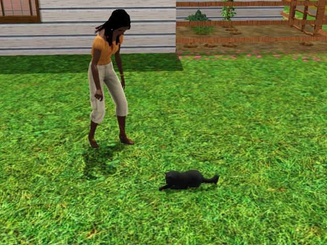 Je veux un Sims 3911