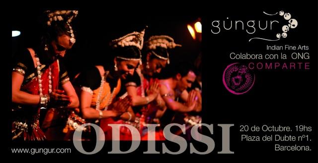Foro de Sitar, Instrumentos y Cultura India - Portal Flyerc11