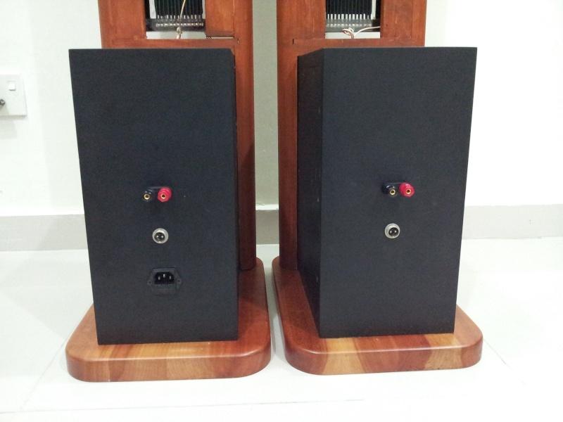 Acoustat ESL Hybrid Electrostatic Floorstanding Speaker (Used)