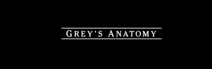 Grey's Anatomy (en cours) Grey_s10