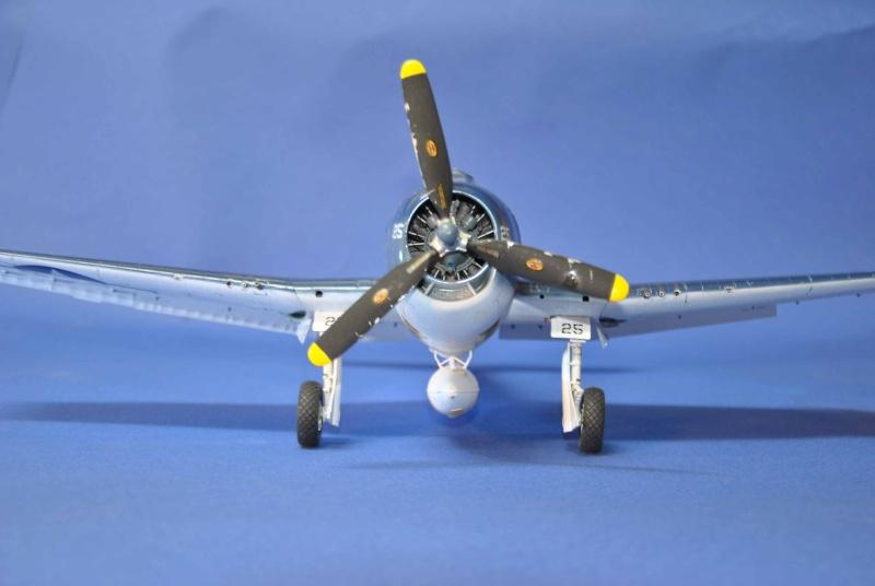 Grumman F6F-5 Hellcat 1/32ème Dsc_9334