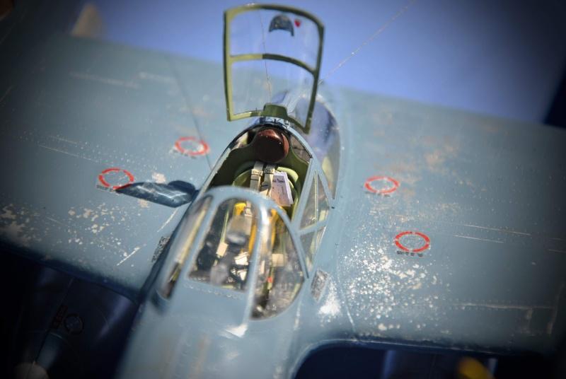 Lockheed F-5B Lightning 1/32ème Dsc_9432