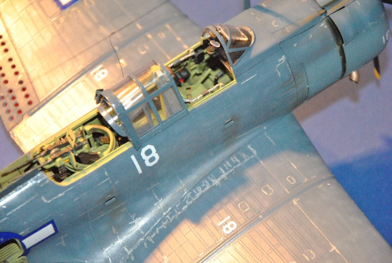 Douglas SBD Dauntless Dsc_9651