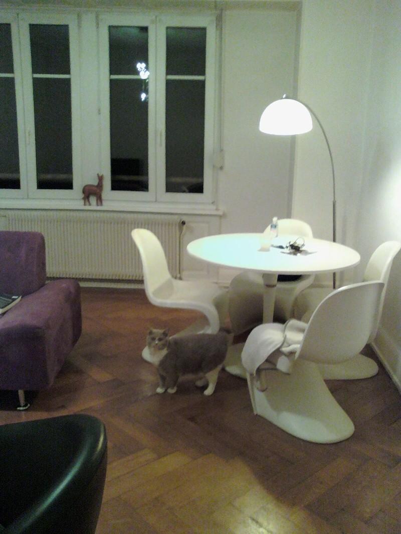 Peinture, aménagement et déco pour mon nouveau salon!  14121812