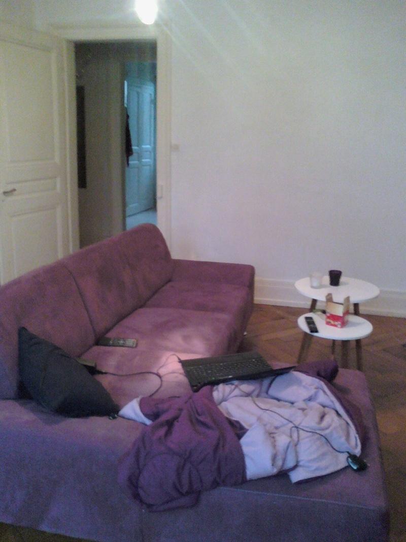 Peinture, aménagement et déco pour mon nouveau salon!  14122813