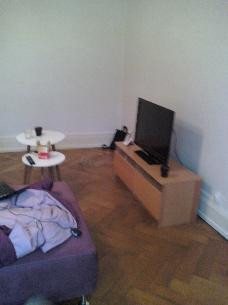 Peinture, aménagement et déco pour mon nouveau salon!  14122814