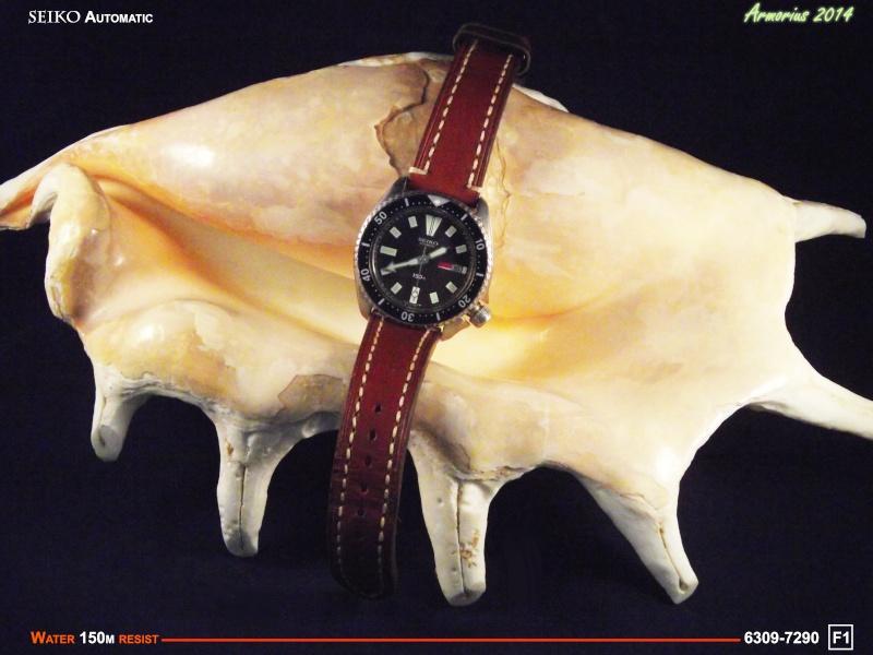 Seiko Diver 6309-7209 F1 Dscf0612