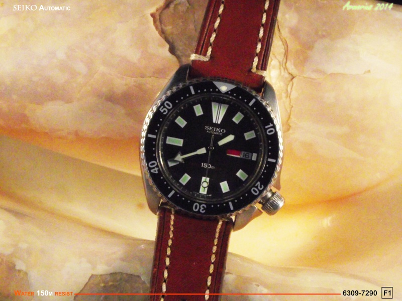 Seiko Diver 6309-7209 F1 Dscf0613