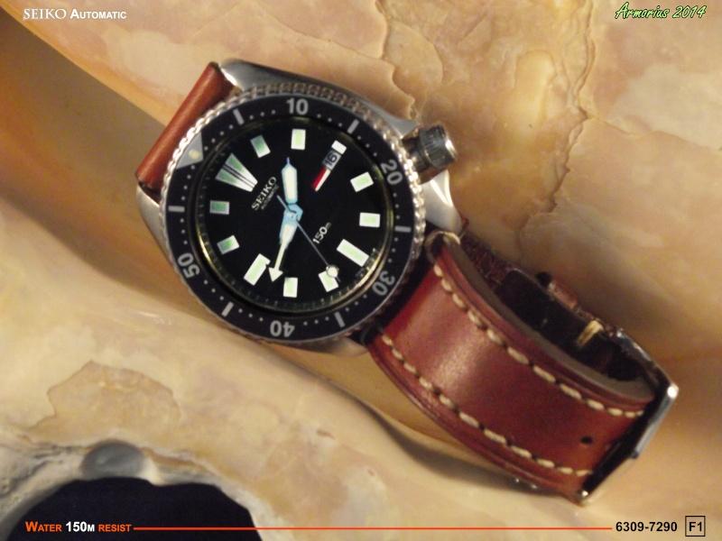 Seiko Diver 6309-7209 F1 Dscf0617