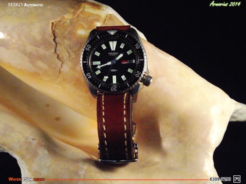 Seiko Diver 6309-7209 F1 Dscf0710