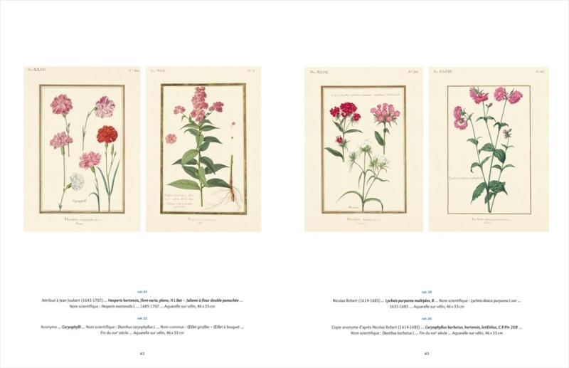 Exposition Fleurs du Roi au grand trianon 1024x714