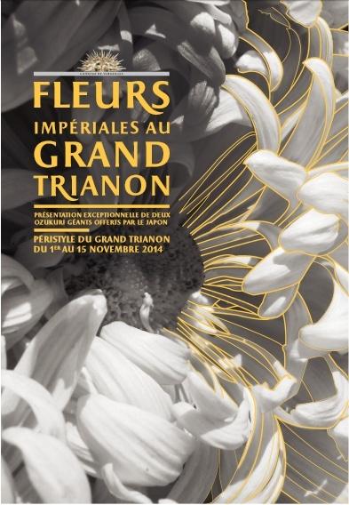 Versailles expose des chrysanthèmes japonais en 2014 Chrysa11