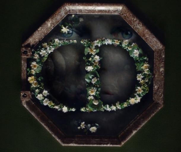 Dior et Versailles Diorse10