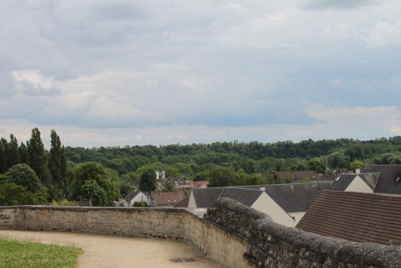 Abbatiale de Saint Leu d'Esserent, Oise 2014_035