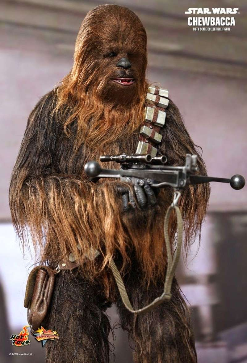 Hot Toys - Star Wars Episode IV - MMS 262 - Chewbacca 1129