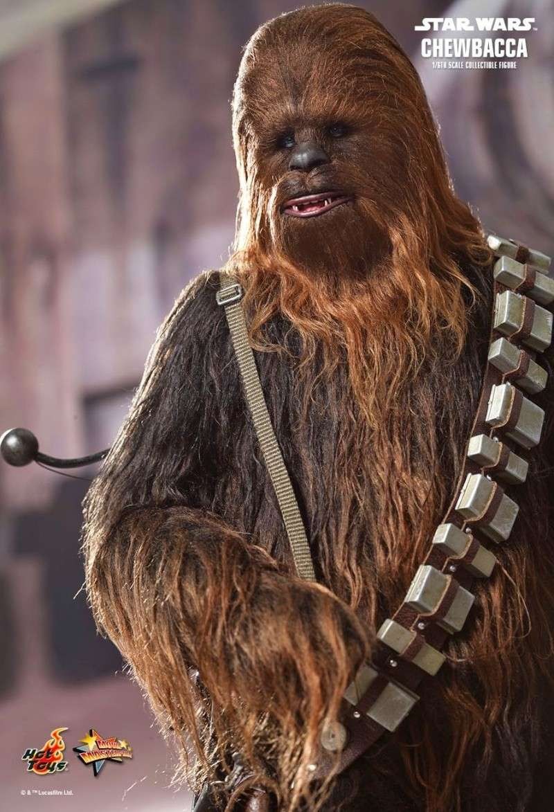 Hot Toys - Star Wars Episode IV - MMS 262 - Chewbacca 1228