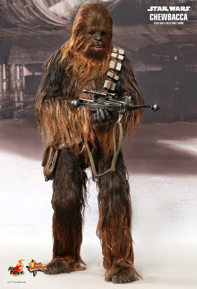 Hot Toys - Star Wars Episode IV - MMS 262 - Chewbacca 247
