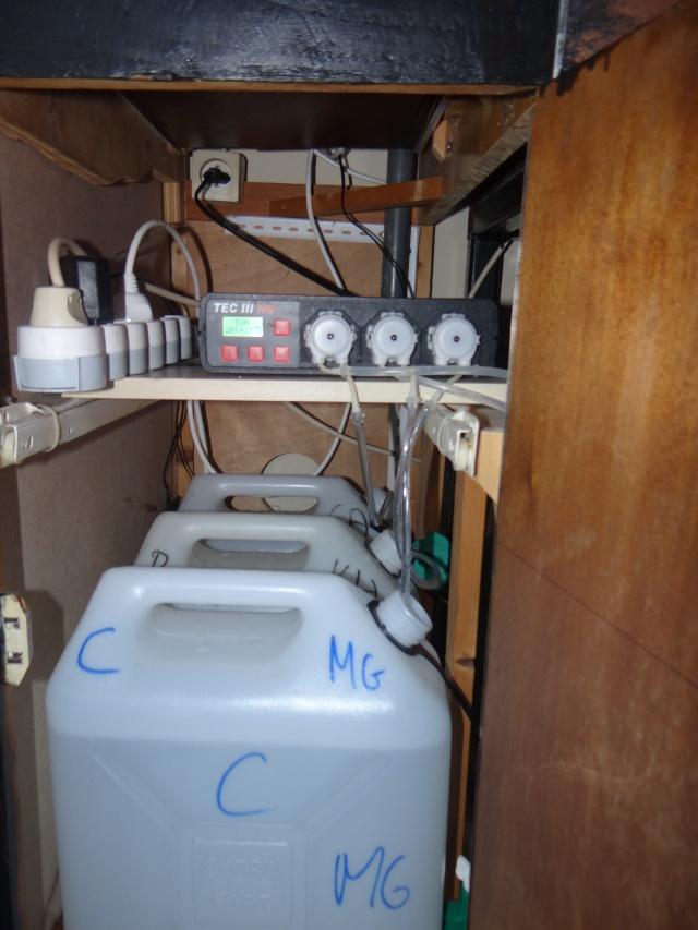 Le 468 litres récifal à Coli Dsc02420