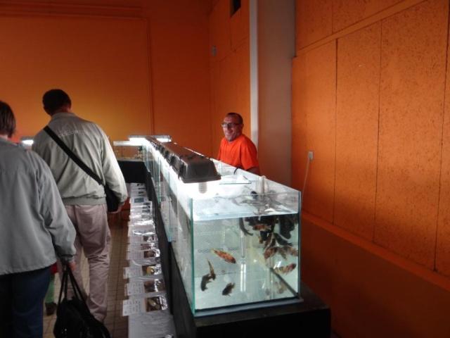 Bourse à Sarreguemines -  Dimanche 12 Octobre 2014 Dsc03322