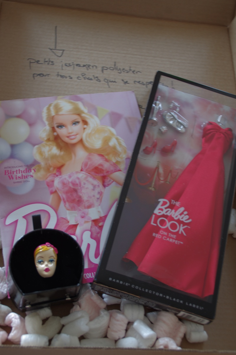 Les Barbie - Page 3 Imgp3811