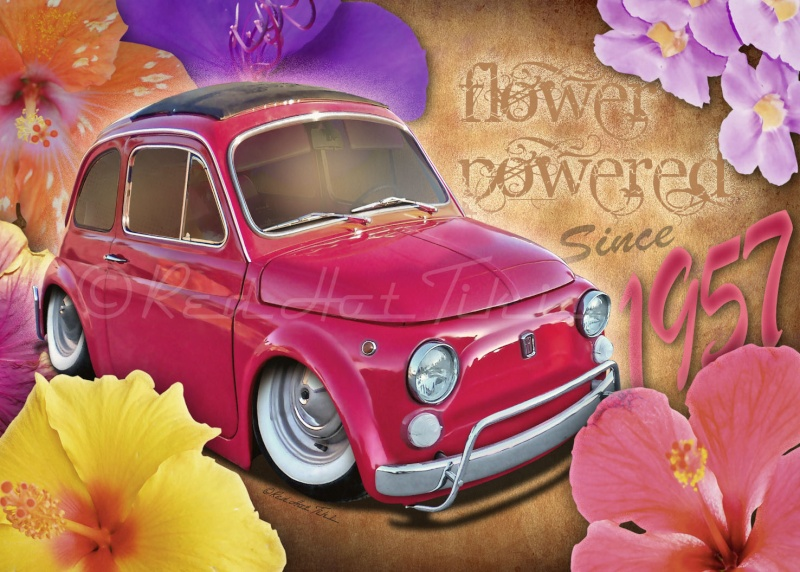 Car-Toonerie - Page 13 Fiat5o10
