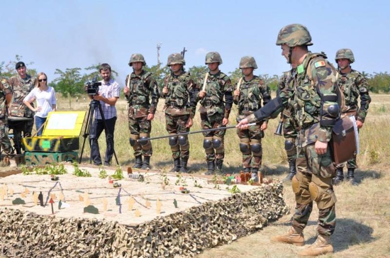 Forces armées moldaves 1373