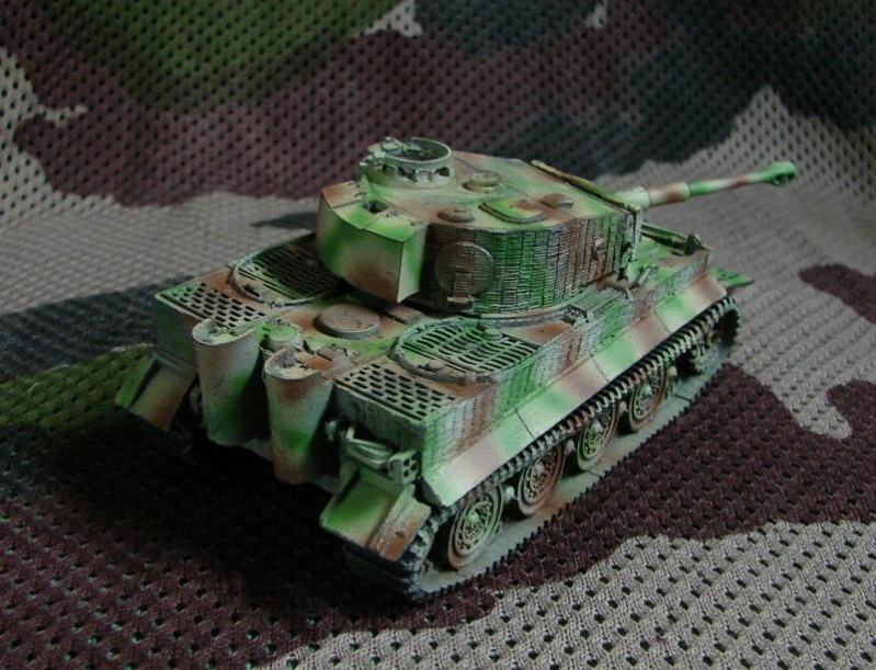Wittmann's TIGER  [Warlord Games/Bolt Action - 28mm] Dsc01413