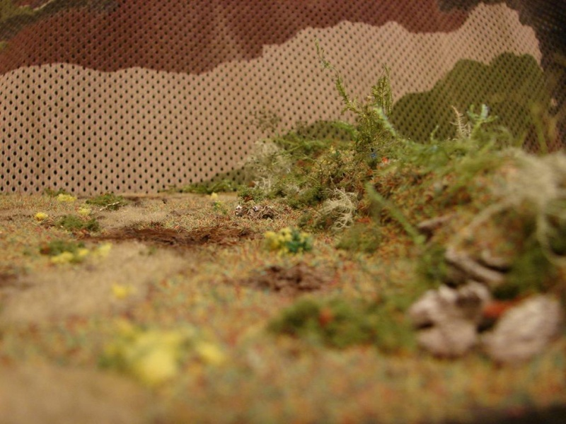 Wittmann's TIGER  [Warlord Games/Bolt Action - 28mm] - Page 2 Dsc01449