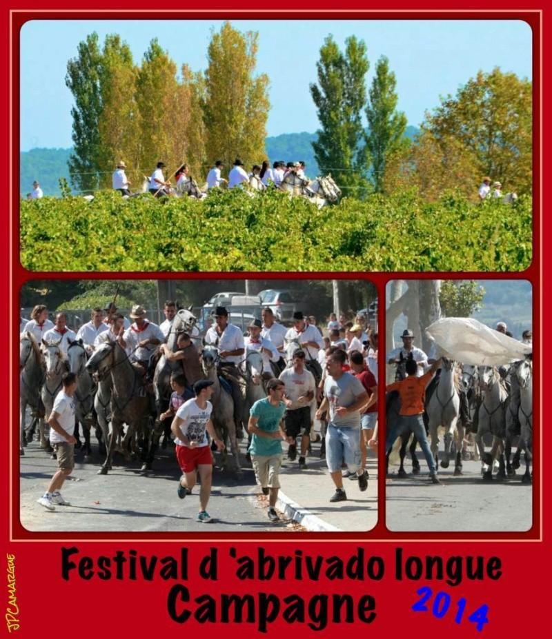 Festival d'abrivado longue , Campagne ( 07/09/2014 ) _dsc4210