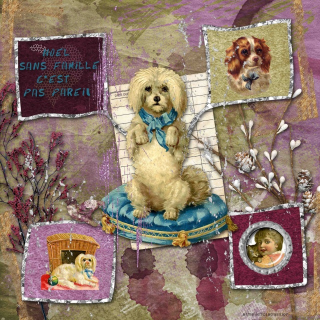 La galerie de Décembre  - Page 2 3821410
