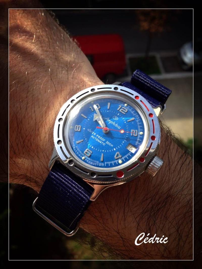 Feu de vos montres sur Nato Picker42