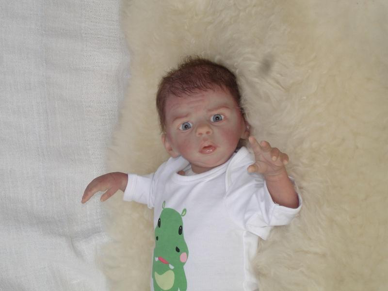 Mein zweiter Josiah  Dsc01611