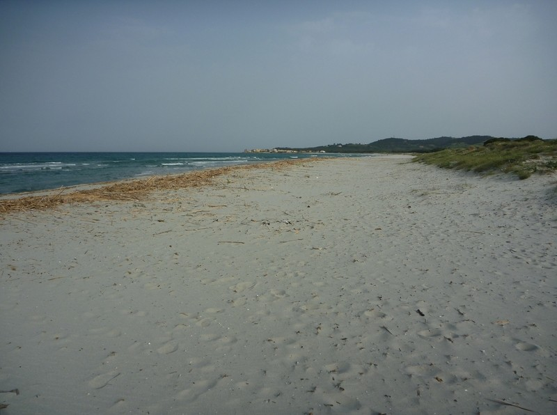 Furax file en Sardaigne en Sept 2014 P1050713