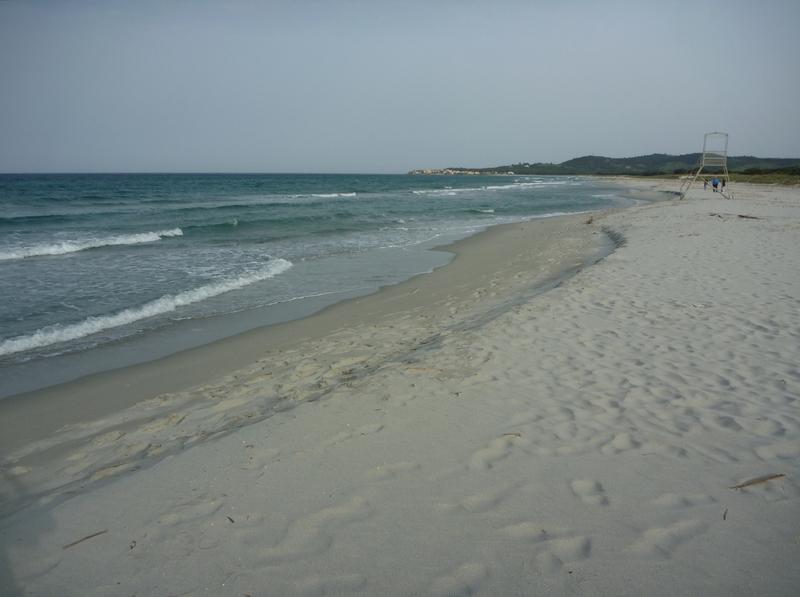 Furax file en Sardaigne en Sept 2014 P1050714