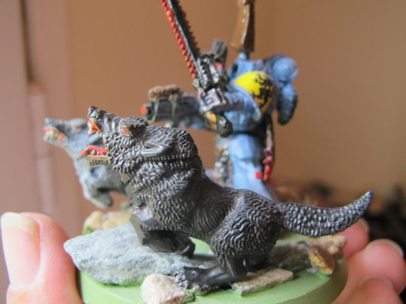 Mes figs : Space Wolves. - Page 6 Img_0813