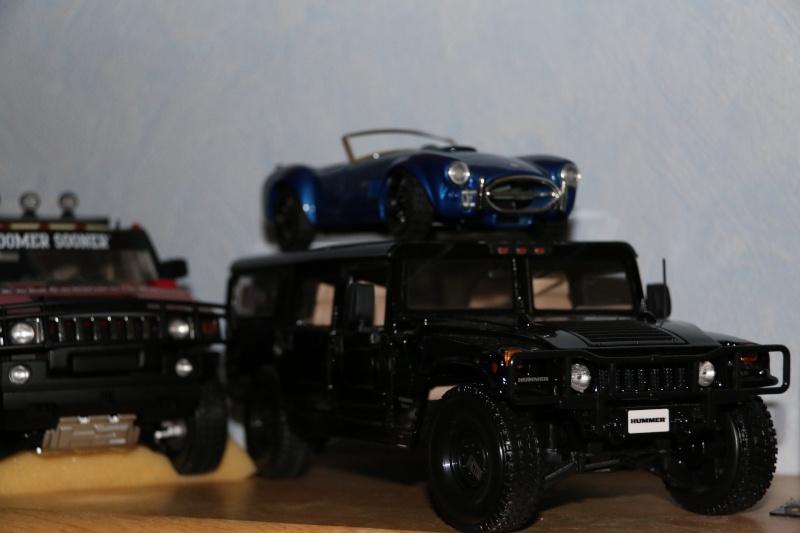 miniatures Hummer Img_2211