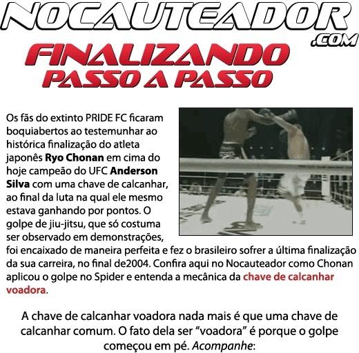 Como foi a finalização na derrota de Anderson Silva no Pride Passo_10