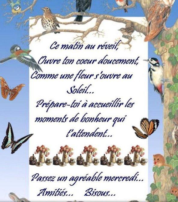 Bon Mercredi Chrony15