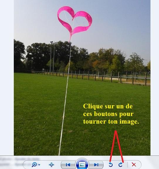 Monofil Coeur Par René Maier (Suisse) Coeur11
