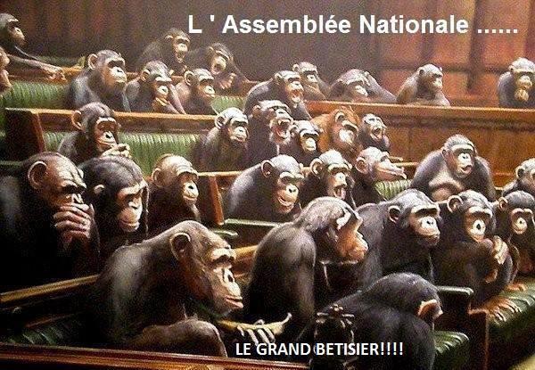 nos représentants ! 10168110