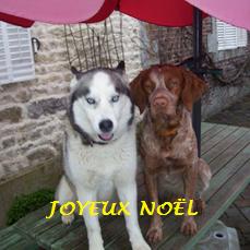 JOYEUX NOËL A TOUS Cid_d911