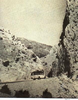 ALGERIE PRESSE 1954 - (3 journaux en tout)  COMPLET. Nov_5410