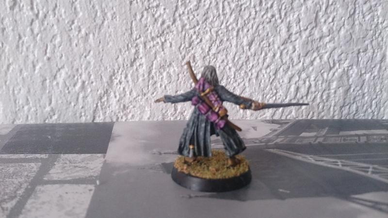 Golden Sauron n°2, Catégorie 1 : Héros pédestre Dsc_0217