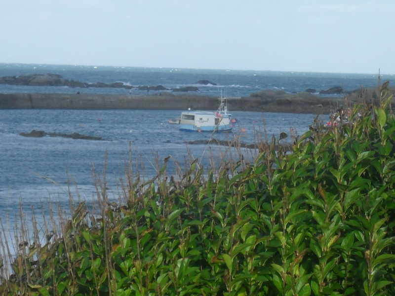 En Finistère Nord ,fait toujours très beau ....SI SI ! 00423