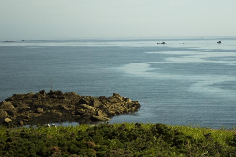 Sur l'île Callot  Callot11