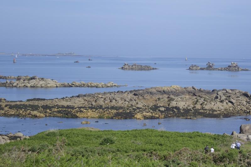 Sur l'île Callot  Callot12