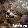 June et ses connaissances Cerven10