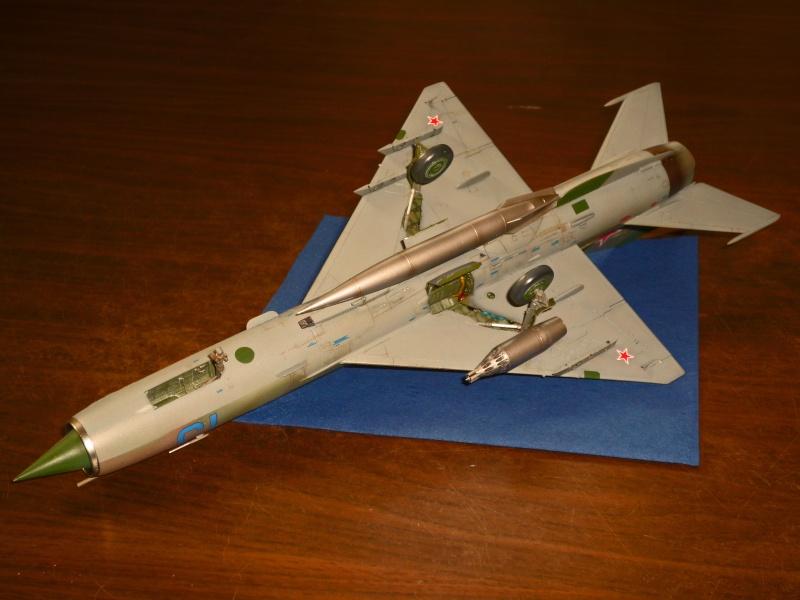 MiG-21 SMT Fishbed-K  [ EDUARD ] (Montage en cours) - Page 4 P1090020