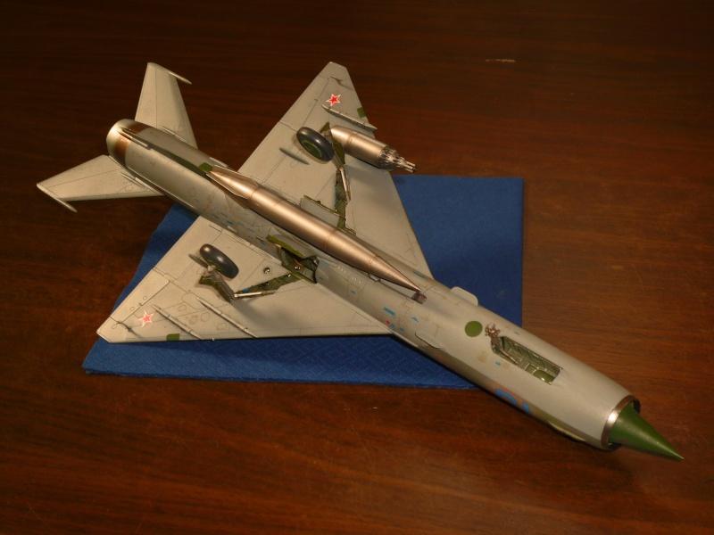 MiG-21 SMT Fishbed-K  [ EDUARD ] (Montage en cours) - Page 4 P1090110